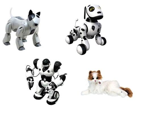 Ausleih roboter paket