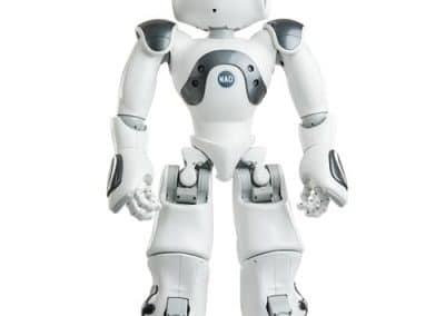 Humanoiden Roboter Nao